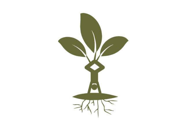 Liz Fairweather's Logo